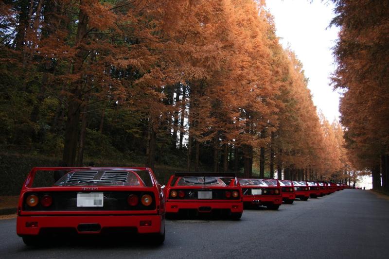 DLEDMV Ferrari F40 reveil & tunnel japan 001