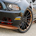 """""""Bad Penny"""" Mustang by CDC 4"""