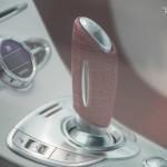 Xzibit au Gumball 2014 en Veyron ... 5
