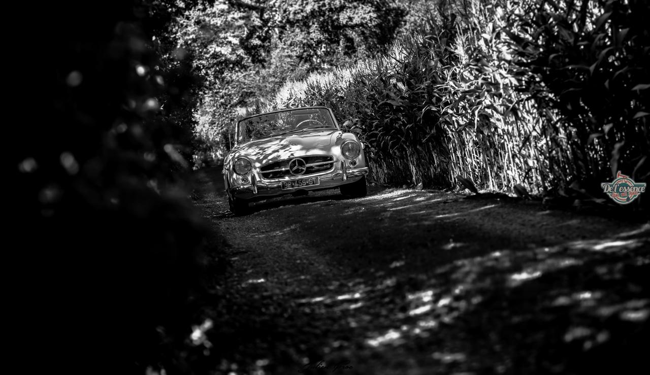 DLEDMV - Mercedes 190 SL JulienF - 02