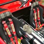 Maserati Barchetta - L'injuste oubliée... 3