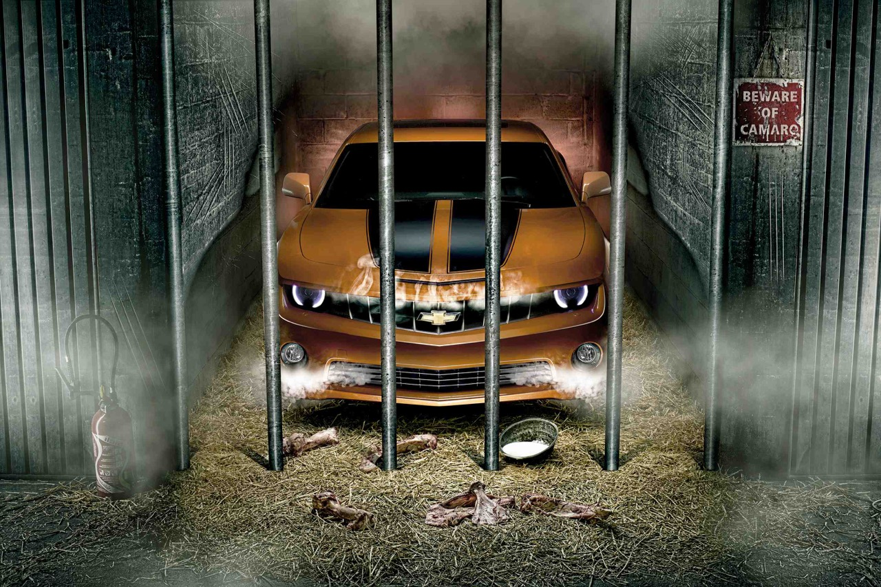 #Petrolhead : Dingo - Discussion avec un Tôle Art ! 8