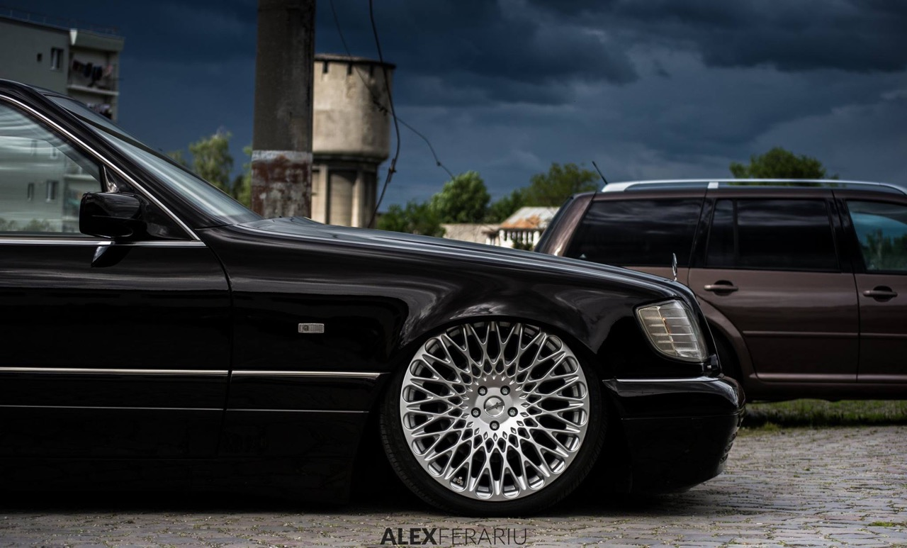 Mercedes S500 - Dumbo en Cast13... 18