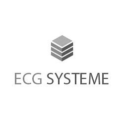 ECG Système Agence WEB