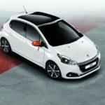 Peugeot 205 Cabriolet Roland Garros - Jeu, set et match ! 16