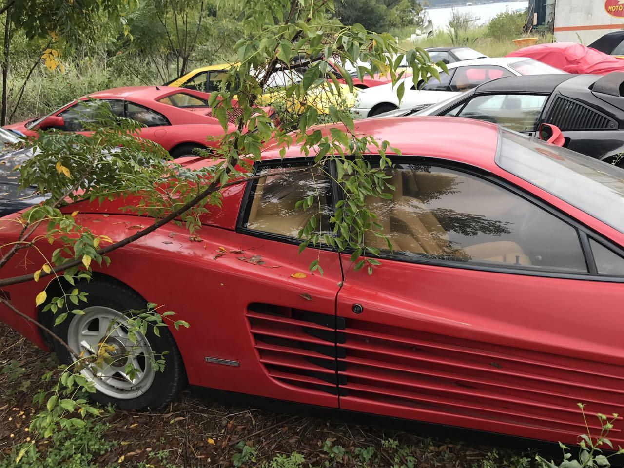 Un cimetière de Ferrari ! Les chevaux se cachent pour mourir... 3