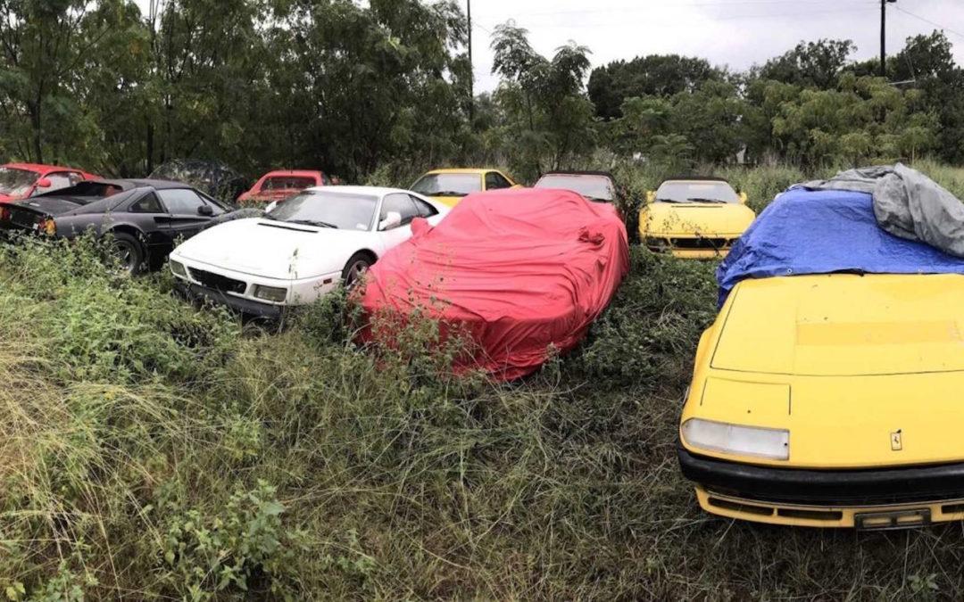 Un cimetière de Ferrari ! Les chevaux se cachent pour mourir…