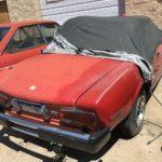 Aspen Auto Import : Il faut sauver le soldat Fiat ! 95