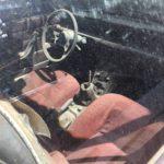 Aspen Auto Import : Il faut sauver le soldat Fiat ! 50