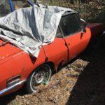 Aspen Auto Import : Il faut sauver le soldat Fiat ! 39