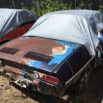 Aspen Auto Import : Il faut sauver le soldat Fiat ! 19