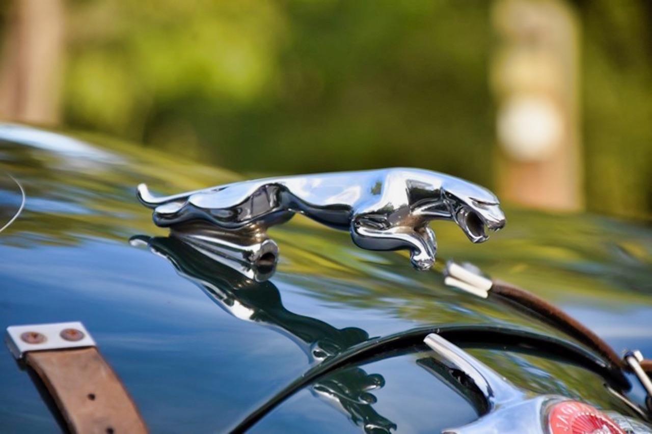 Jaguar 3.4 Saloon... Une Mk1 dans la course ! 1