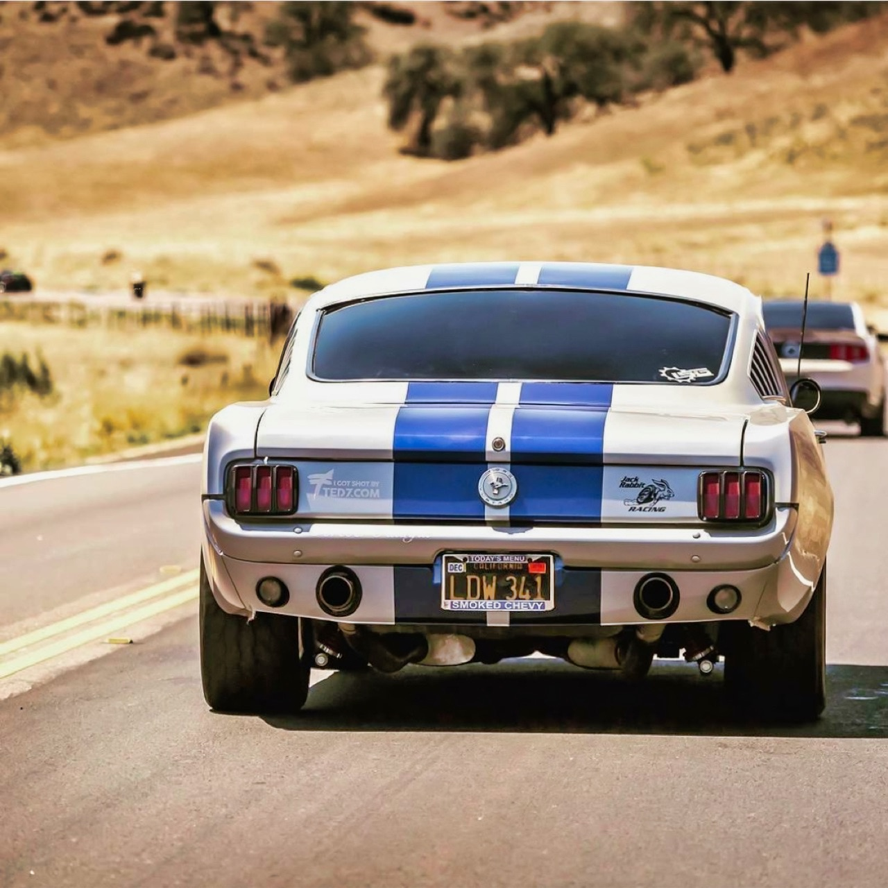 '66 Ford Mustang Fastback - Le gros Coyote ! 6